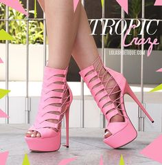 Tropic Craze Ankle Booties ᖽ•Ꮰ੬ℕട❜̋ᗷѳꂷɬίǪṳ̈ℯ•ᖾ
