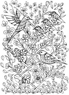 1000 Images About Creative Haven Coloring Pages By Dover