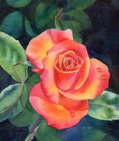 LOVE IS NEAR SOLD rose flower watercolor painting, painting by artist Barbara Fox