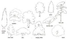 Image from http://www.wetcanvas.com/Community/images/12-Jan-2003/13320-treeshapes.jpg.