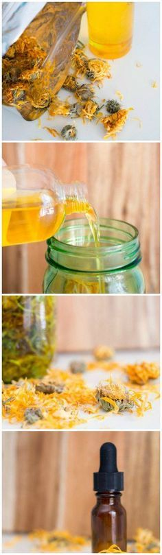 Calendula is SO beneficial for your skin! Try these easy calendula infused oil recipe and see the benefits for yourself! Herbal Remedies, Health Remedies, Natural Remedies, Healing Herbs, Medicinal Herbs, Natural Medicine, Herbal Medicine, Calendula Oil, Infused Oils