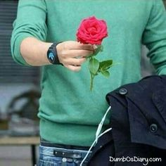 Boy in green shirt with red rose in hand