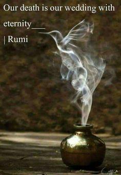 ⊰❁⊱ Rumi                                                                                                                                                                                 More