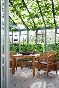EVA SKAPADE ETT HÅLLBART TRÄDGÅRDSBRUK: I det vackra växthuset suddas gränsen mellan ute och inne ut. I taket klänger vinrankan 'Nordica' som förra året gav en stor skörd av goda, blå druvor. Här gör sig lökkorgen och fatet av pil, som Eva har flätat själv, fint. Evas idéer för en hållbar trädgård: 1. Bunkra regnvatten och vattna med det, i stället för dricksvatten, under torrperioder. 2. Bygg en struktur med gångar, häckar och murar för att skapa ett bra mikroklimat. 3. Minska växternas…