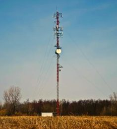 This is a Bellus (Bell & Telus) Mobility site located just outside the Northwest corner of Mount Brydges, Ontario. The third sector of antennae was recently