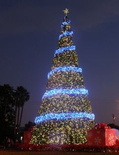Sea World Christmas Tree