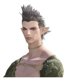Elezen - The Final Fantasy Wiki has more Final Fantasy information than Cid could research