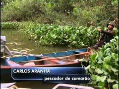 Globo Repórter - Delta do Parnaíba 04/10/2013 parte 1/4