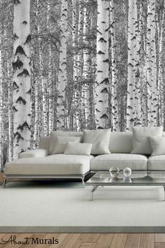 Birch Tree Forest Black and White Wall Mural creates an enchanted feeling with tall, majestic trees. The birch tree wallpaper looks stunning in a living room, nursery or bedroom. Not only is it easy to hang, but it's printed on removable wallpaper, so just pull the birch tree mural off when you're ready for a new look. Plus it's eco-friendly, so it's safe to use around kids and pets. Birch Tree Mural, Birch Tree Wallpaper, Tree Forest, Photo Wallpaper, White Walls, Enchanted, Wall Murals, Eco Friendly, Trees