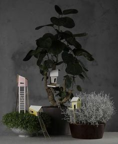 Whimsical Project: Potted Plant Villages. Might do these for Garden Parties
