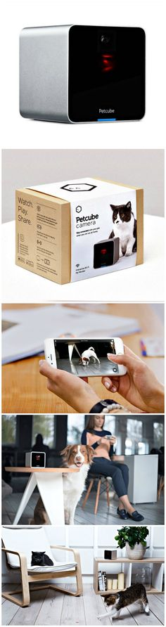 Access your Petcube Camera from anywhere and entertain your furry friends anytime.