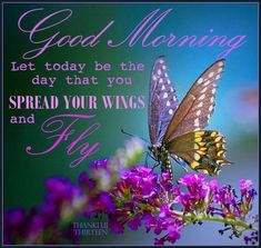 Good Morning, Let Today Be The Day That You Spread Your Wings And Fly morning good morning morning quotes good morning quotes good morning greetings Good Morning Friends Quotes, Good Morning Beautiful Quotes, Morning Thoughts, Good Morning Inspirational Quotes, Morning Greetings Quotes, Good Morning Picture, Good Morning Messages, Good Morning Good Night, Morning Pictures