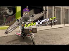 1000+ images about Funky Pigeon TV on Pinterest | Tv ads ...