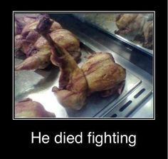 Chicken Died Fighting