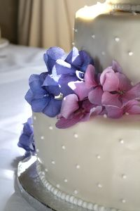 torte - hortensie