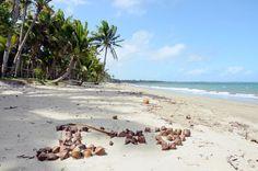 Coral Coast - Fiji Islands - null