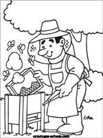 Bee-keeper coloring page Bee Coloring Pages, Coloring Pages For Kids, Coloring Sheets, Adult Coloring, Coloring Books, Art Drawings For Kids, Art For Kids, Bees For Kids, Bee Activities