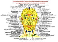 точечный массаж | Записи с меткой точечный массаж | Дневник ipola : LiveInternet - Российский Сервис Онлайн-Дневников