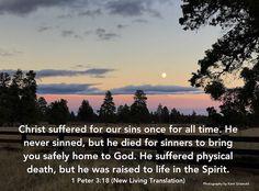 Sins - 1 Peter 3:18