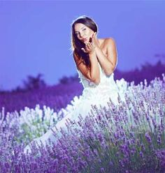 Lavender field, girl in white dress