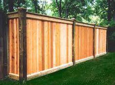Landscape on pinterest privacy fences natural fence and for Natural privacy fence