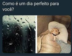 Adoro ficar dormindo enquanto chove 😴😴😴 Wtf Funny, Funny Memes, Jokes, Memes Status, I Love To Laugh, Best Memes, Funny Photos, Haha, Nostalgia