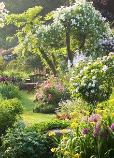 Back Gardens, Outdoor Gardens, The Secret Garden, Secret Gardens, Garden Cottage, Front Yard Landscaping, Dream Garden, Garden Planning, Garden Inspiration