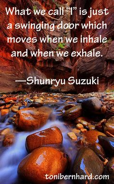 "This quotation from Zen Master Shunryu Suzuki sits at the start of the chapter titled ""Self as Ever Shifting Flow"" in my book How to Wake Up."