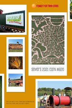 Find all the details for the 2021 corn maze and fall festival in our directory. Corn Maze, Twin Cities, Seasons, Fall, Autumn, Fall Season, Seasons Of The Year