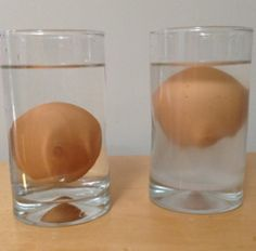 I did this experiment in 6th grade. Salt makes the egg float. Put some water in a glass and add salt. Put the egg in and continue stirring in the salt until the egg floats.