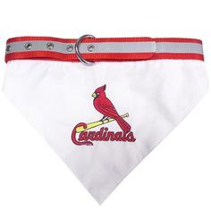 St. Louis Cardinals Dog Bandana Collar Large