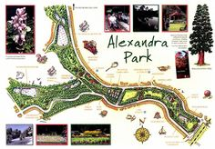 Map of the Park - Alexandra Park in Hastings, East Sussex