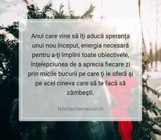 An Nou Fericit, Happy New, Vines, Wish, December, Advice, Christmas, Forget, Xmas