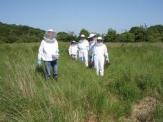 A group of new beekeepers - beeed.org.uk