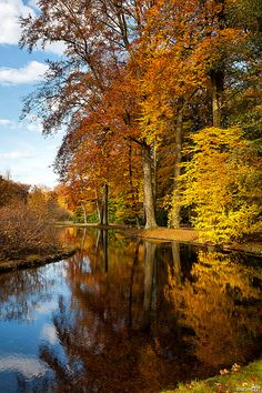 Beautiful autumn day!netherlands