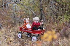 Calvin & Hobbes by Redditor raven12456 #Halloween #DIY #Kids #Calvin_and_Hobbes