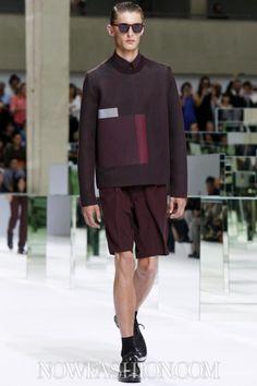 Dior Homme Menswear Spring Summer 2014 Paris