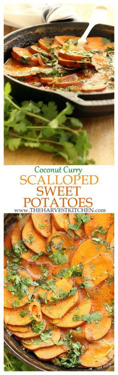 These skillet Coconut Curry Scalloped Sweet Potatoes are simmered on the stovetop in a decadent coconut curry sauce. They're rich and creamy and out of this world delicious! | healthy recipes | | vegan scalloped potatoes | | dairy free scalloped potatoes | | coconut curry potatoes | | clean eating |