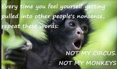 Every time you feel yourself getting pulled into other people's nonsense, repeat these words:  NOT MY CIRCUS.                               ...