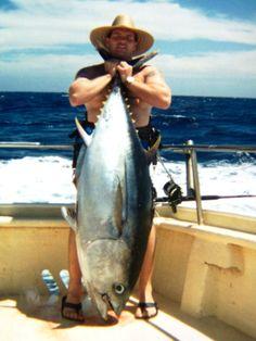 176 lbs blue fin tuna
