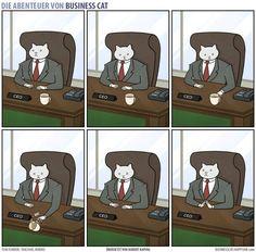 So sieht dein Büroalltag aus, wenn dein Chef eine Katze wäre - watson