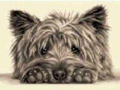 cairn terriers LOVE puptique.com