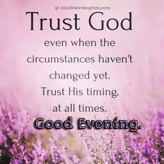 Cute Good Evening Quotes With HD Images Greetings - Good Morning Fun Good Evening Messages, Good Evening Wishes, Good Evening Greetings, Goodnight Quotes Inspirational, Inspirational Good Morning Messages, Good Evening Love, Comforting Scripture, Wishes For Friends, Happy Wishes