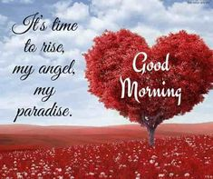 """Inspirational Good Morning Quotes and Wishes. Be positive """"Each good morning we are born again, what we do today is what matters most"""" Don't struggle to Be Positive. Good Morning For Her, Morning Wishes For Her, Morning Message For Her, Good Morning Romantic, Good Morning Picture, Good Morning Flowers, Morning Pictures, Good Morning Images, Morning Msg"""