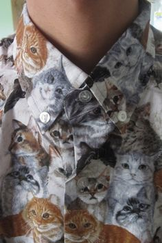 Your new cat shirt | 30 Pictures That Everybody Wants To Share With Their Friends