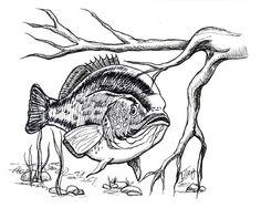 http://felicialilley.smugmug.com/Portfolio/Published/i-trb7PZ9 #thisisfelicialilley #illustration #felicialilley #penandink  visit my blog www.thisisfelicialilley.wordpress.com