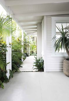 Front garden inspiration: 18 stunning ideas to try An array of lush plants set against a white weatherboard backdrop create a relaxed tropical entry. Interior Exterior, Exterior Colors, Exterior Design, Outdoor Spaces, Outdoor Living, Weatherboard House, Queenslander, Edwardian House, Exterior Cladding