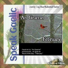 Scottish Gaelic Phrases, Scottish Words, Gaelic Words, Irish Language, Word Of The Day, Outlander, Celtic, Scotland, Ireland