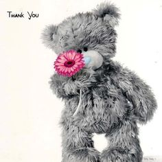 obrigada............. Tatty Teddy, Teddy Pictures, Bear Pictures, Teddy Beer, Blue Nose Friends, All Things Cute, Bear Toy, Cute Bears, Cute Images