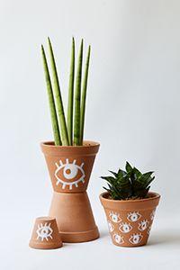 Vaso Terracota + Espada de São Jorge Terracota, Planter Pots, Pizza, Sword, Gardening, Vases, Gardens, Succulents, Plants